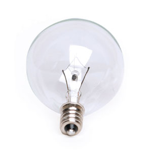 25 Watt Light Bulb