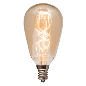 Edison 40 Watt Light Bulb