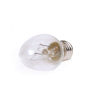 15 Watt Light Bulb